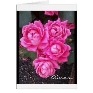 Amor (Espanol) Love Card