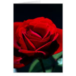 Amor eterno subió tarjeta de felicitación