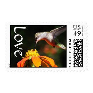 Amor floral de la flor del girasol del pájaro del estampillas