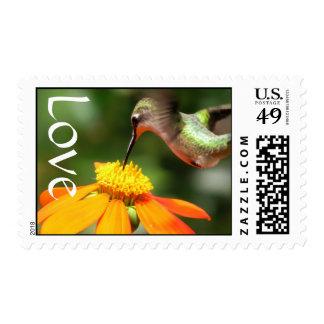 Amor floral de la flor del girasol del pájaro del sellos