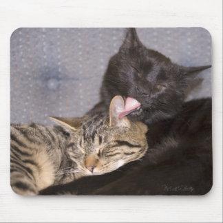 Amor fraternal alfombrillas de raton