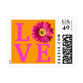 Amor fucsia de la flor de la margarita timbres postales