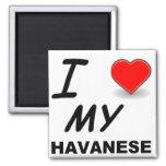 amor havanese imán cuadrado