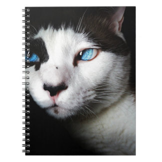 Amor hermoso del gato siamés del ojo azul cuaderno