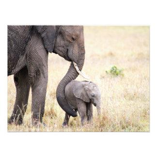 Amor maternal fotografía