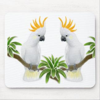 Amor Mousepad del Cockatoo