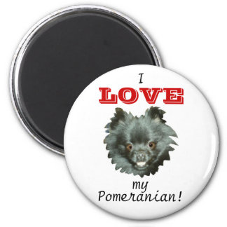 ¡AMOR negro de Pomeranian-I mi Pomeranian! Iman De Nevera