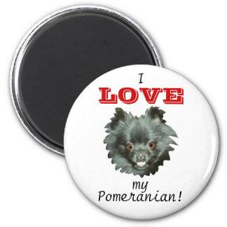 ¡AMOR negro de Pomeranian-I mi Pomeranian! Imán Redondo 5 Cm