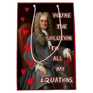 Amor Nerdy divertido de la matemáticas de Newton Bolsa De Regalo Mediana