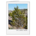 Amor. Paz. Austin. 360 árboles de navidad del lazo Tarjeta De Felicitación