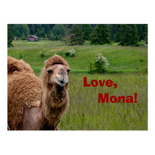 Amor, postal de Mona