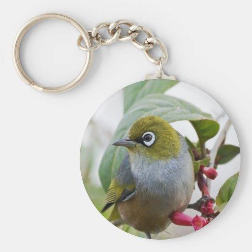 Amor que espera del pájaro de Silvereye para Llavero