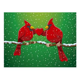 Amor que nieva del pájaro cardinal rojo del navida