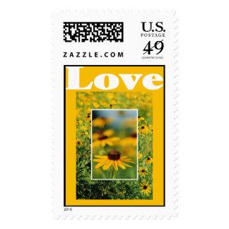 Amor - sello Negro-Observado de Susans