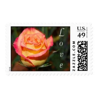 Amor Sello Postal