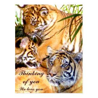 Amor siempre Tigers_ Postales