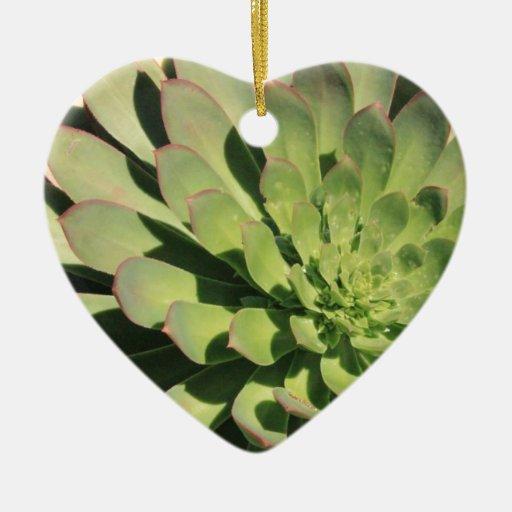 Amor suculento 2 adorno navideño de cerámica en forma de corazón