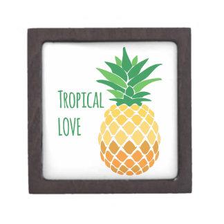 Amor tropical cajas de regalo de calidad