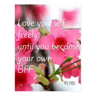 Amor usted mismo BFF Tarjeta Postal