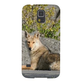 amor verdadero que espera del coyote para funda de galaxy s5
