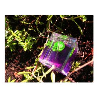 Amor verde postal