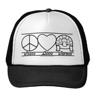Amor y tortugas de la paz gorros