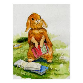 Amores del conejo para leer la postal