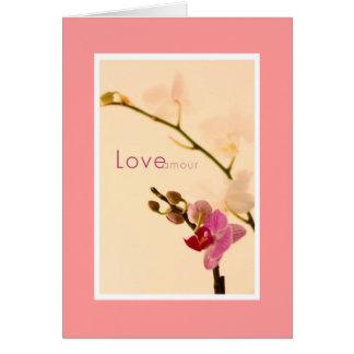 Amorío del amor de la orquídea tarjeton