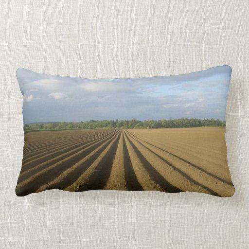 Amortiguador arado del campo almohada