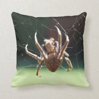 Amortiguador de la araña del tejedor del orbe del cojín