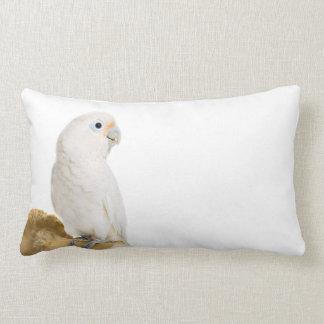 Amortiguador hermoso de la foto del pájaro blanco cojin