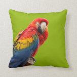 Amortiguador hermoso de la foto del pájaro del lor almohadas