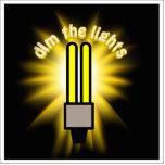 Amortigüe la luz del ahorro de la energía 2u escultura fotográfica