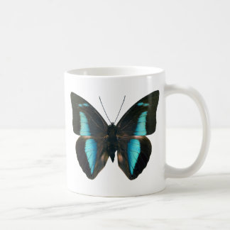 AMPHIMACHUS D COFFEE MUG