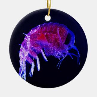Amphipod Hyperiidae Hyperia Macrocephala Double-Sided Ceramic Round Christmas Ornament