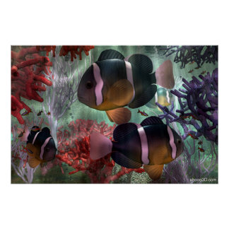 Amphiprion Clarkii Bright Poster