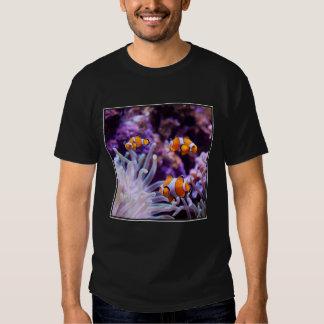 Amphiprion Ocellaris de Ocellaris Clownfish el | Playera