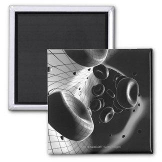 Ampliación blanco y negro de glóbulos imán cuadrado