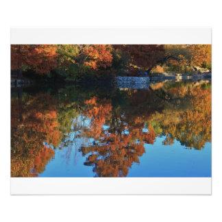 Ampliación de la foto de la reflexión del color de fotografía