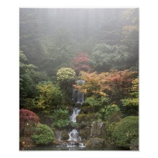 Ampliación japonesa de la foto del jardín