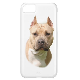 Amstaff Cover For iPhone 5C