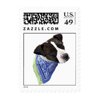 AmStaff Postage Stamps