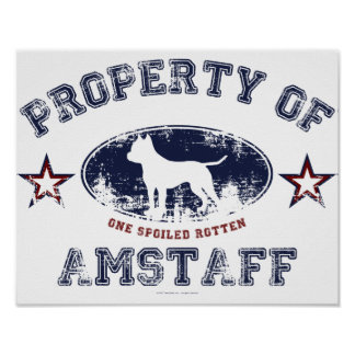 Amstaff Posters