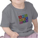 Amsterdam Camiseta