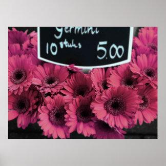 Amsterdam Mauve Flowers Print