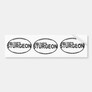 AmuDarya Sturgeon Euro Stickers Bumper Sticker