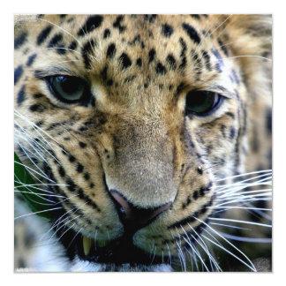 Amur Leopard Invitations