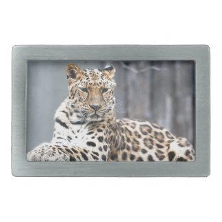 Amur Leopard Rectangular Belt Buckle
