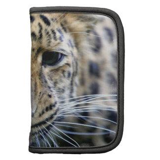 Amur Leopard Wallet Folio Planner