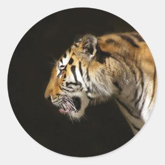 Amur Tiger in Profile Classic Round Sticker